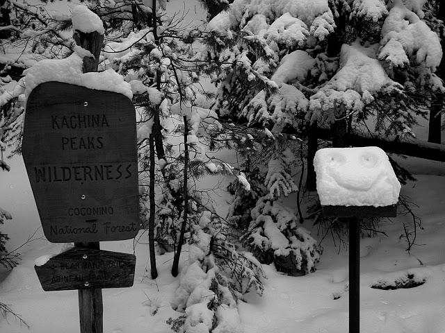 kachina peaks avalanche center